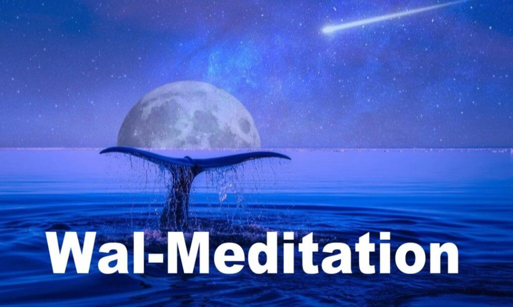 Meditation with Whale-Sounds